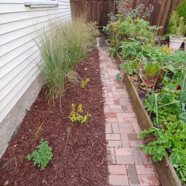 Back Yard Native Plant and Vegetable Garden designed by Wild World Gardens