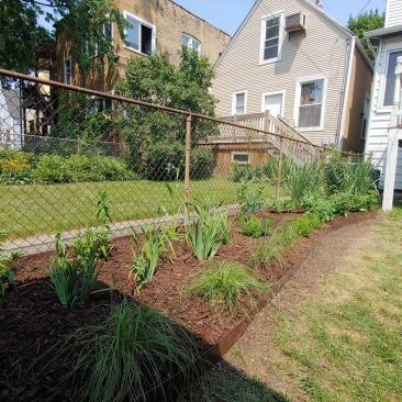 Back Yard Pollinator Garden in Logan Square designed by Wild World Gardens